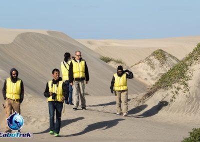 sand dunes lopez mateos