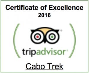 trip advisor certificate of excellence 2016 winner