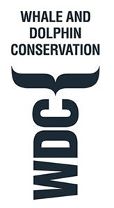 Cabo Trek conservation project