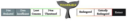 Conservation vulnerable-01