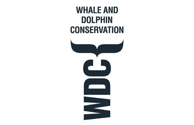 whale dolphin conservation