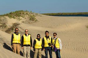 Magdalena Bay sand dunes