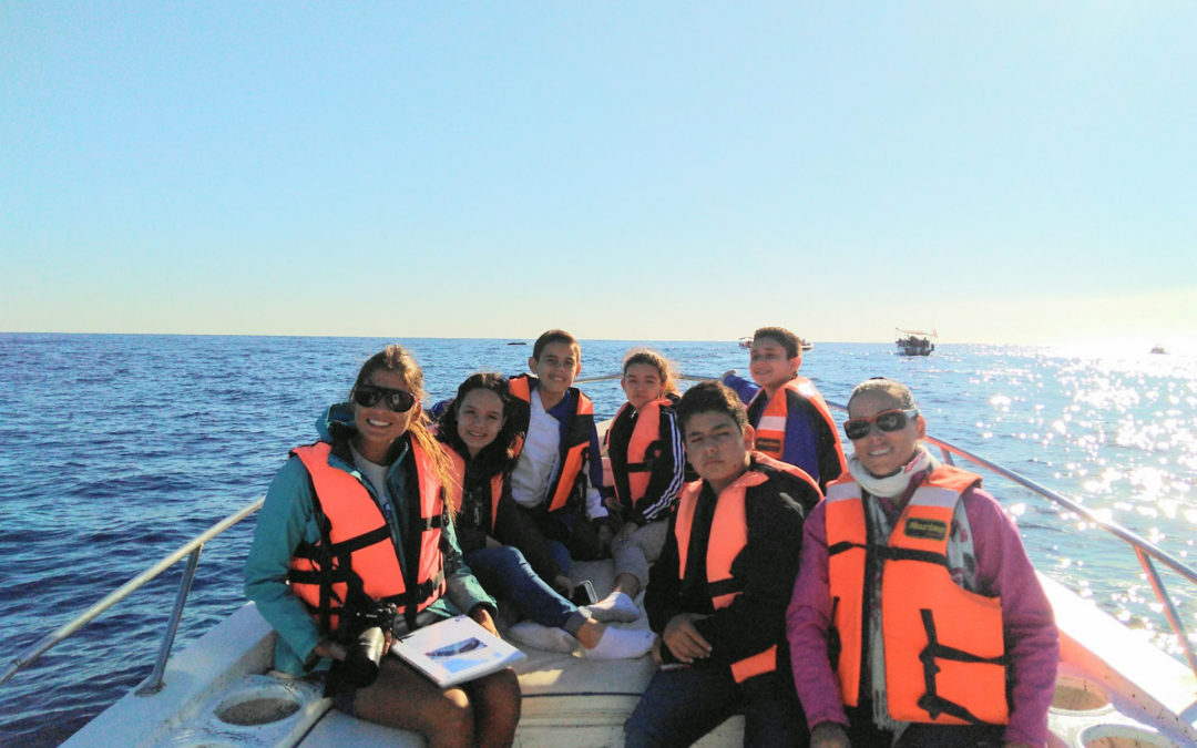 Humpback Whales Preservation Project