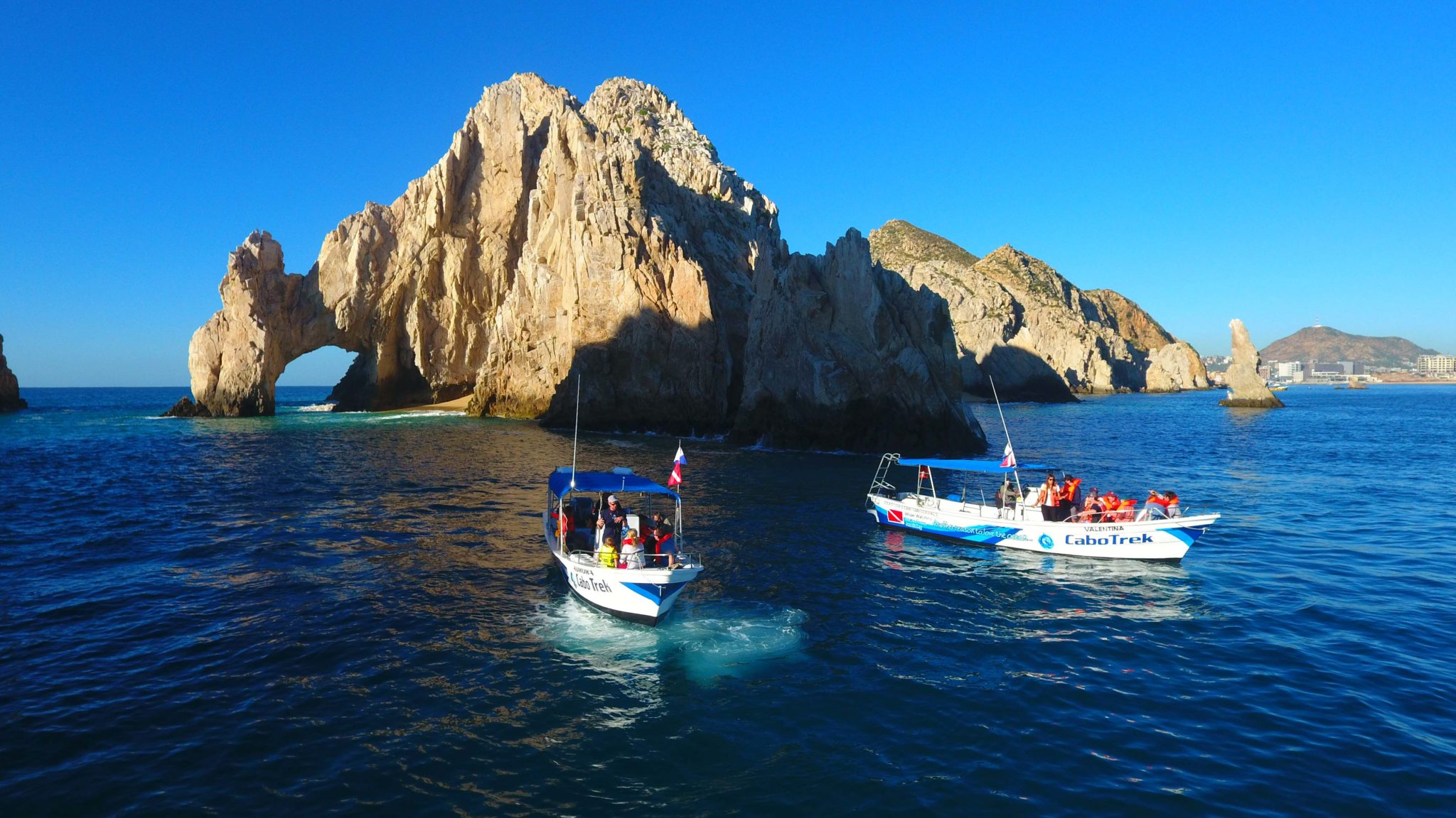 whale watching cabo boat-2