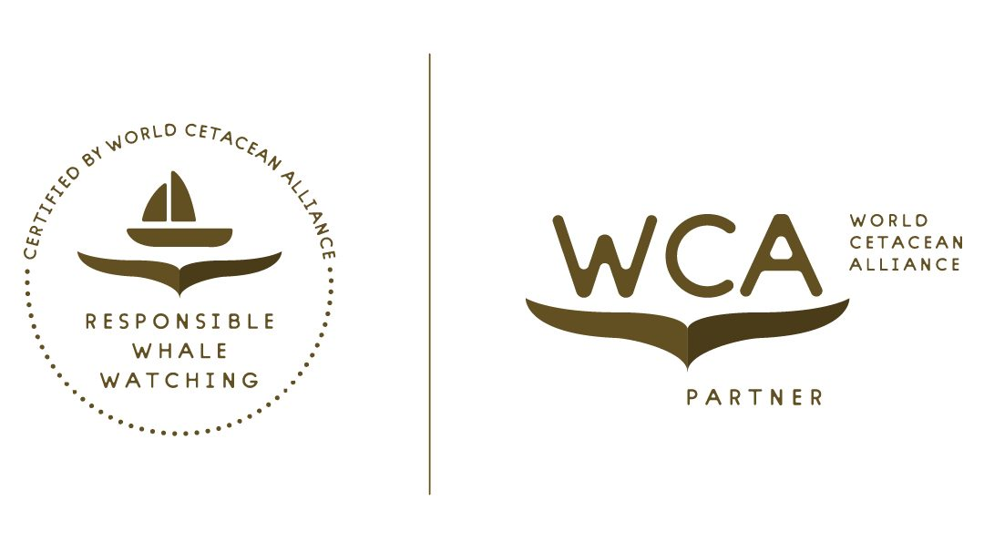 Cabo Trek got certified by WCA!
