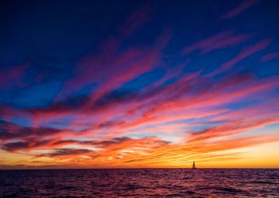 Sunset Whale Cruise_MQ_NL-11
