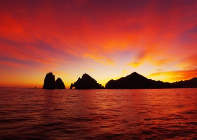 Sunset Whale Cruise_MQ_NL-18