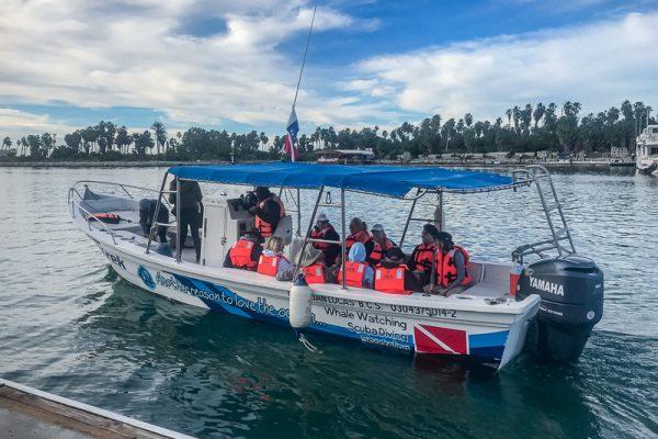 Cabo Trek Boat-12